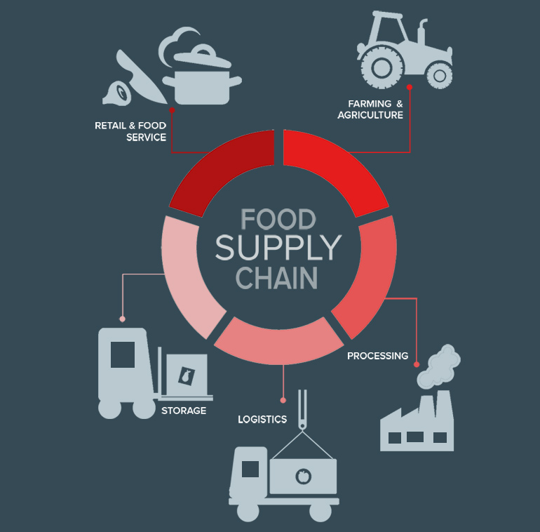 consulenza aziendale food